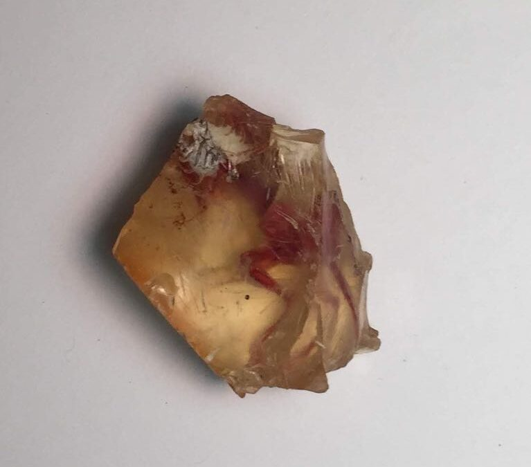 Not a fossil, agate